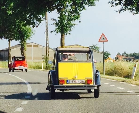Bumblebee & Roody on the road