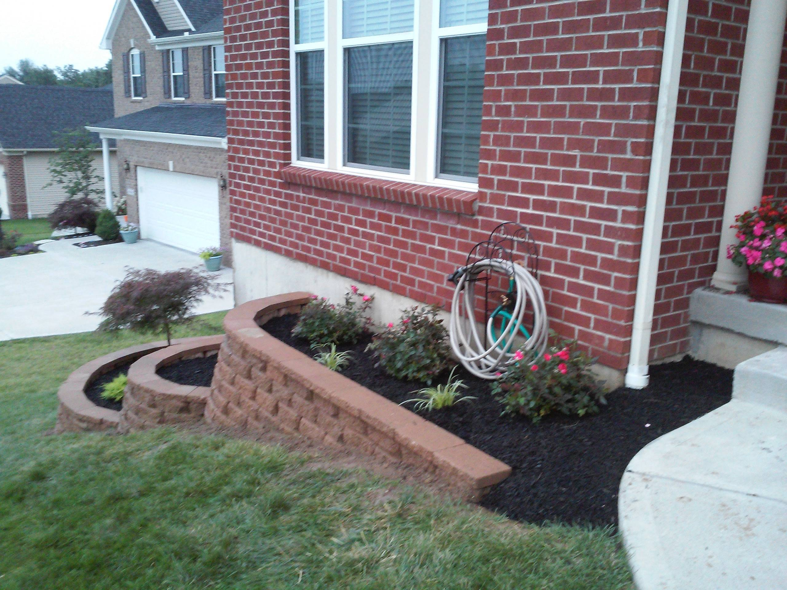Mulch and Plants