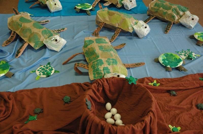 Zeeschildpadden van galibi en hun eiers