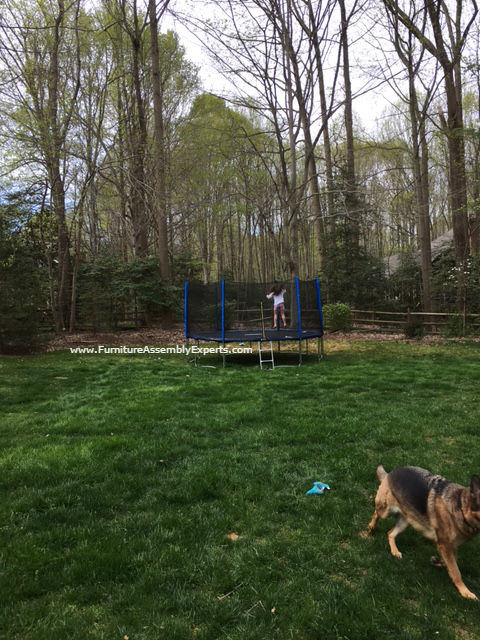 skywalker trampoline removal service in reston VA