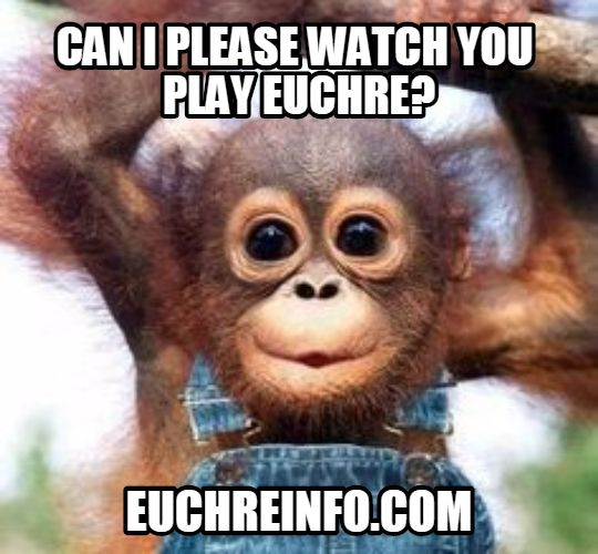 Can I please watch you play Euchre?