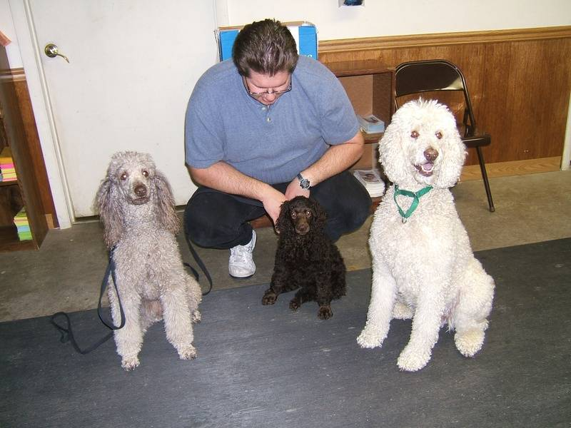 Penny's first obedience event outing. (Amber, Penny, Remmy) 4/9/06.