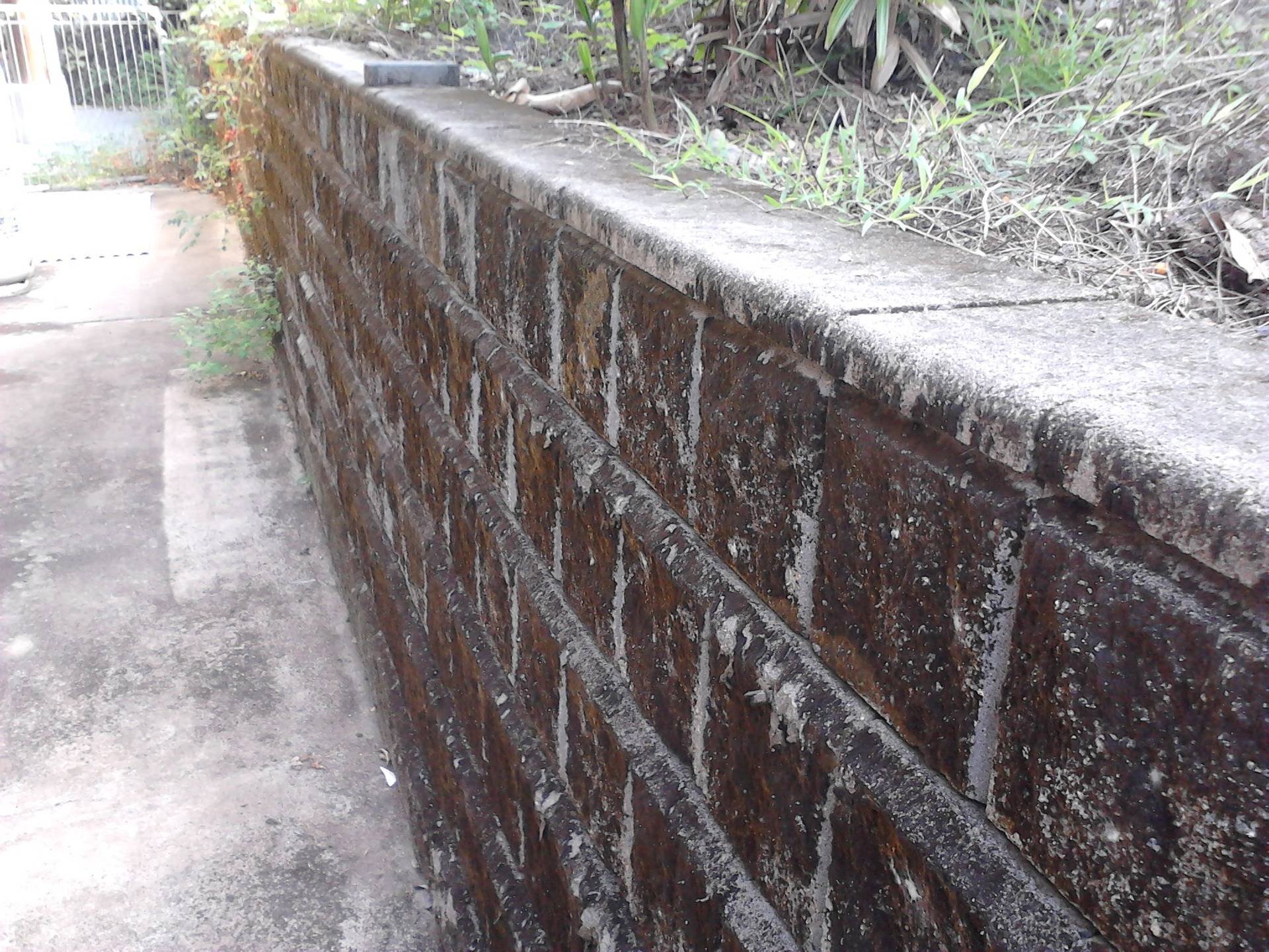 Retainer Wall Before
