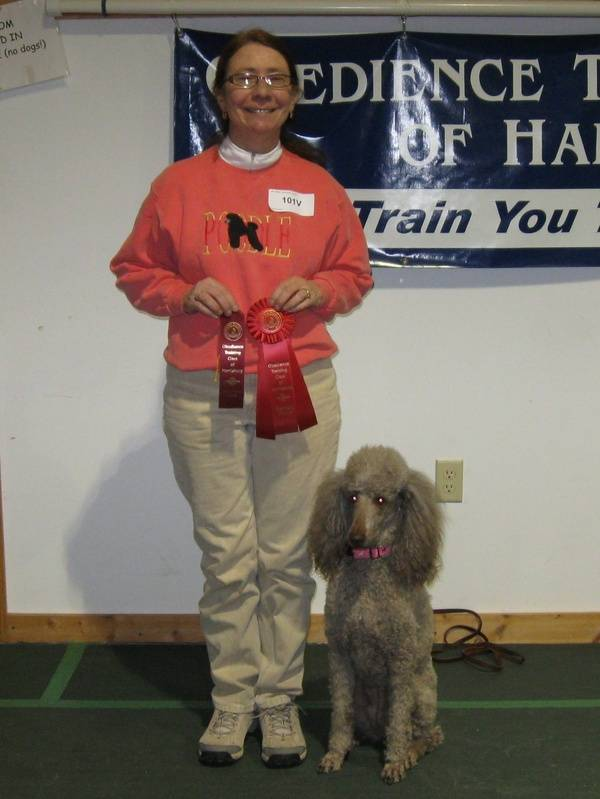 Amber winning second place in CDSP Novice and earning her first CD-C leg.  1/22/11.