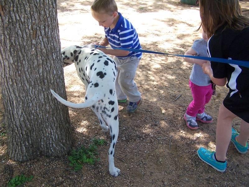 The kids love Chloe too