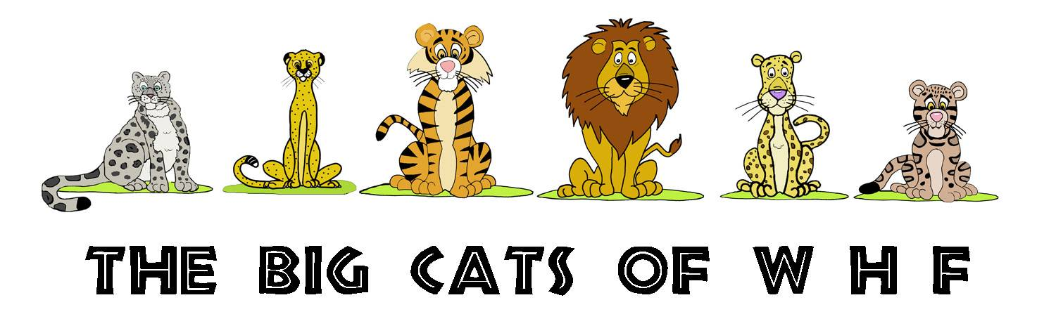 THE BIG CATS OF WHF