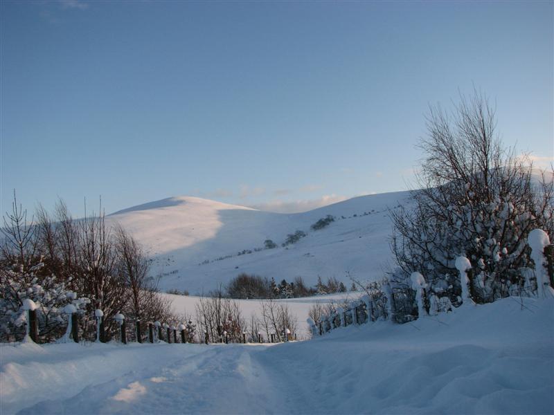 Jan 10, snow 13