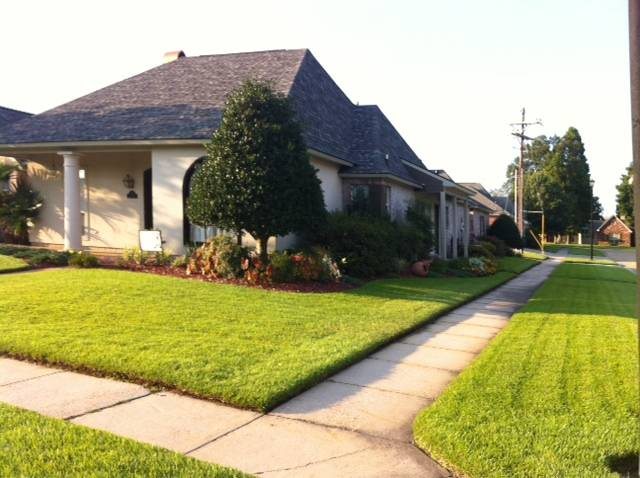 Aug. Yard of the Month on Mossy Oak