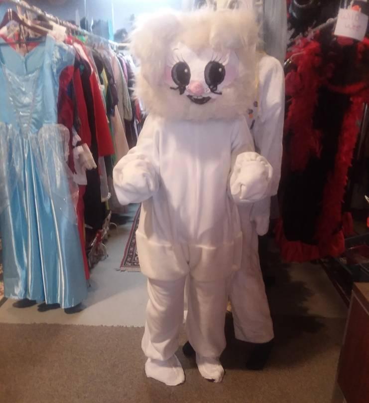 Small- Medium Bunny w/head