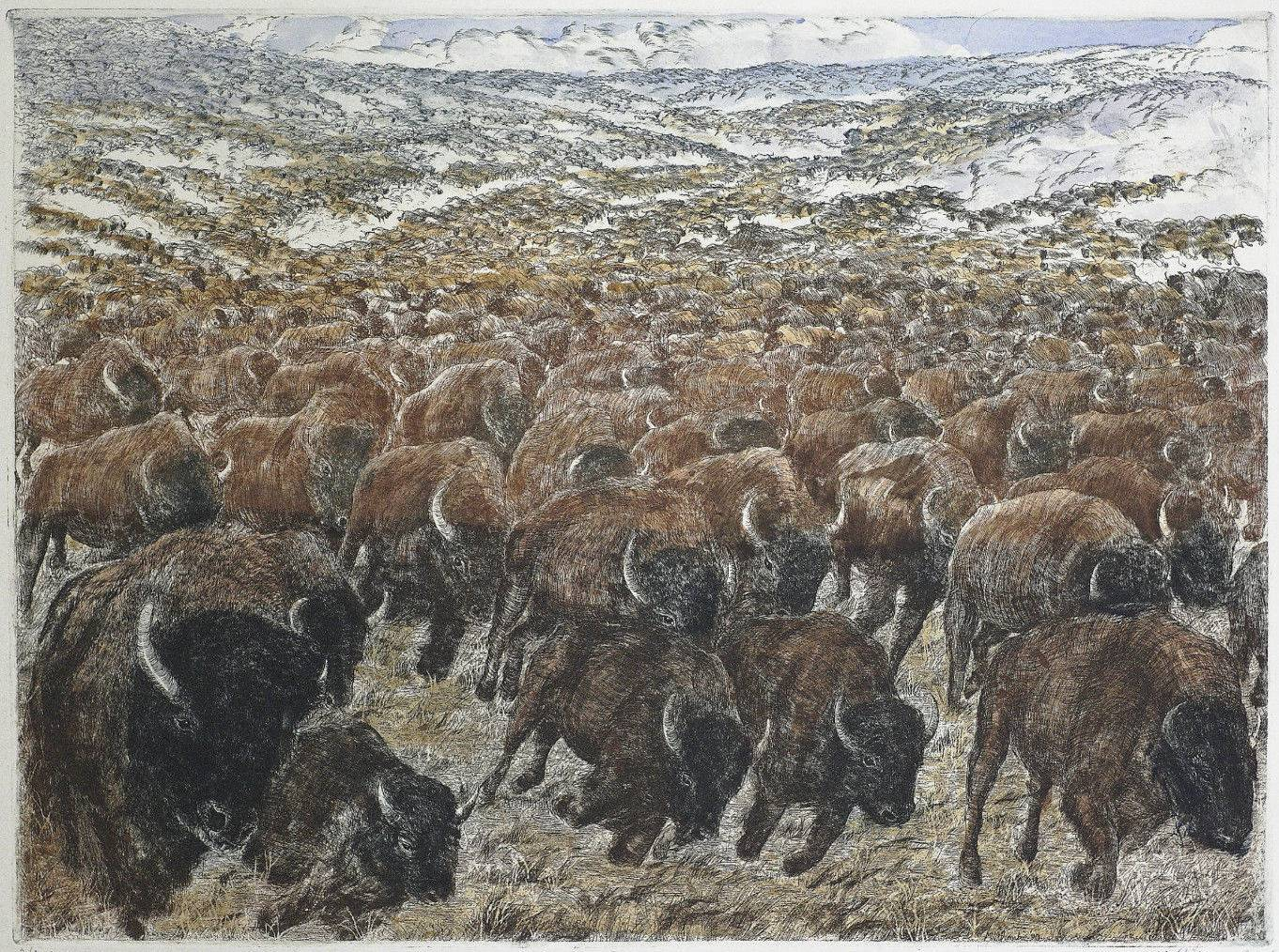 Cry Of The Bison