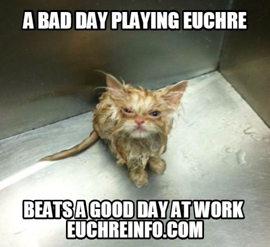 A bad day playing Euchre beats a good day at work.