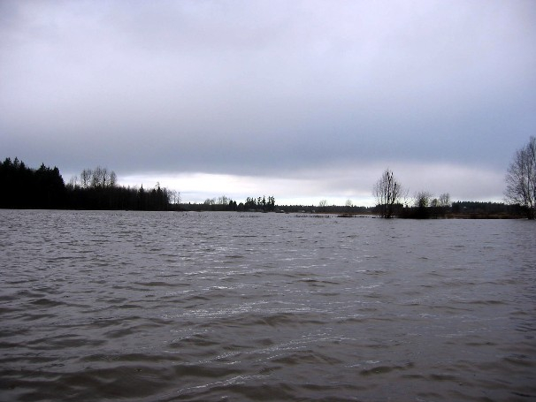 The Lower Fields Looking West