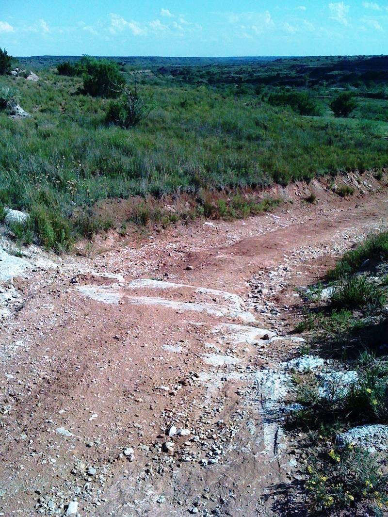 Whitetail Road