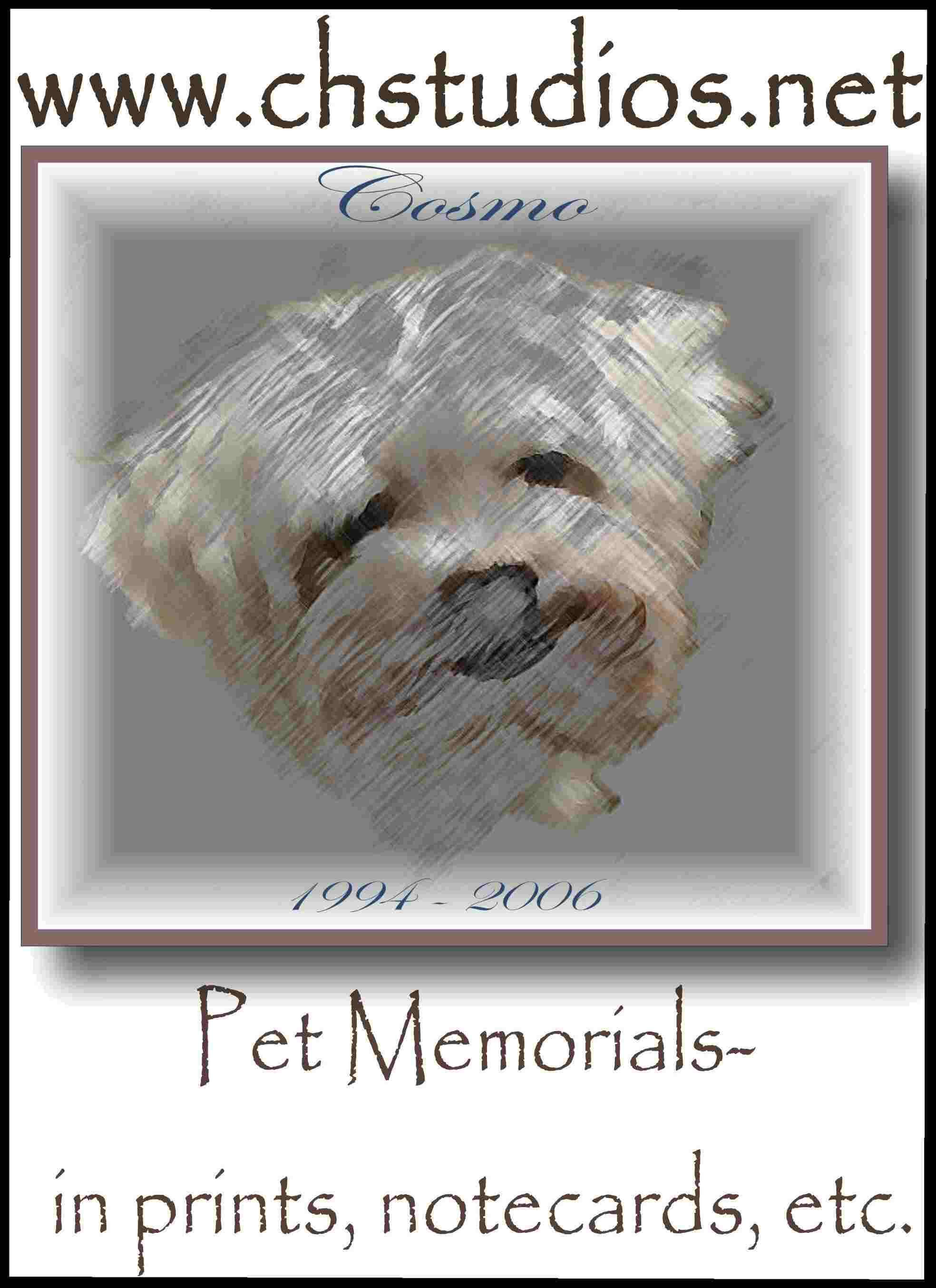Exclusive Pet Portraits