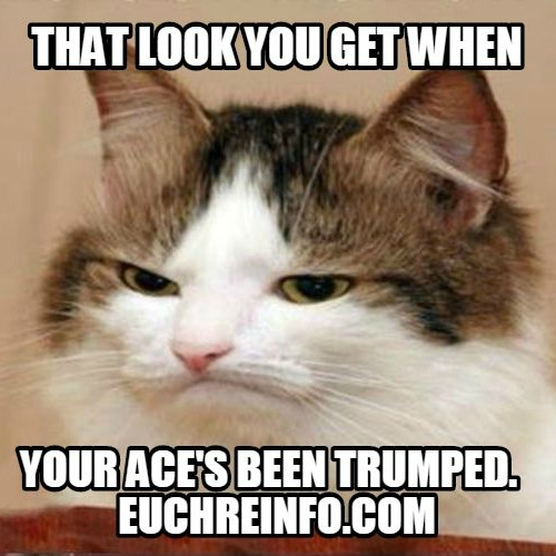 That look you get when your ace's been trumped.