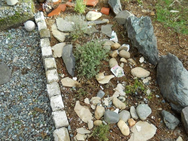 Herb Garden just steps outside door