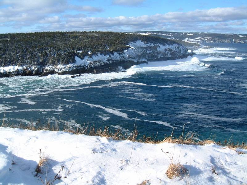 Middle Cove Winter Beauty