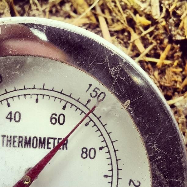 Perfect Temperature