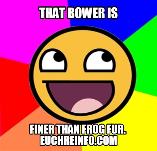 That bower is finer than frog fur
