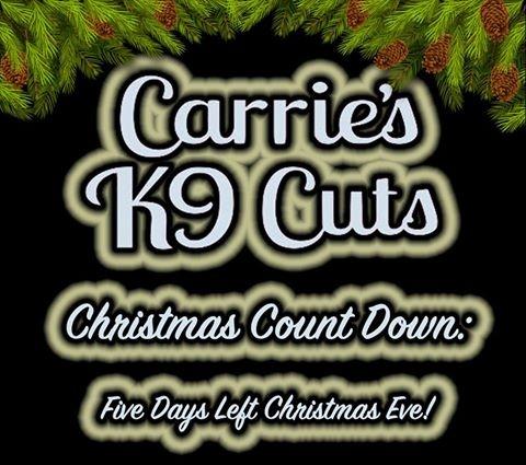 5 Days Christmas Eve