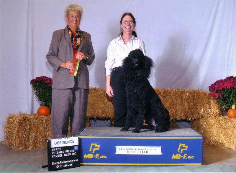 Maxwell winning second place in Open A and earning his first CDX leg.  10/24/10.