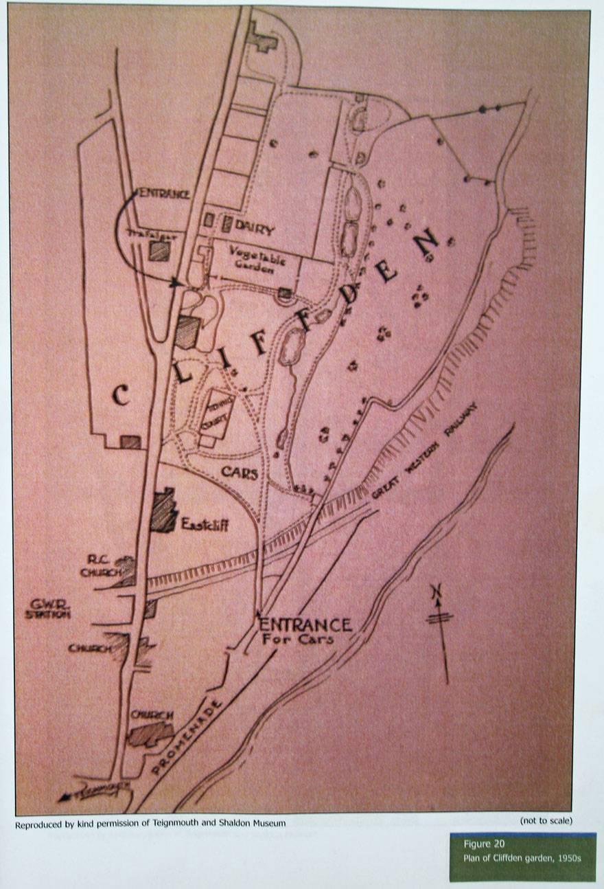 Plan of Cliffden garden 1950's