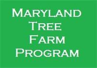 Maryland Tree Farm Program