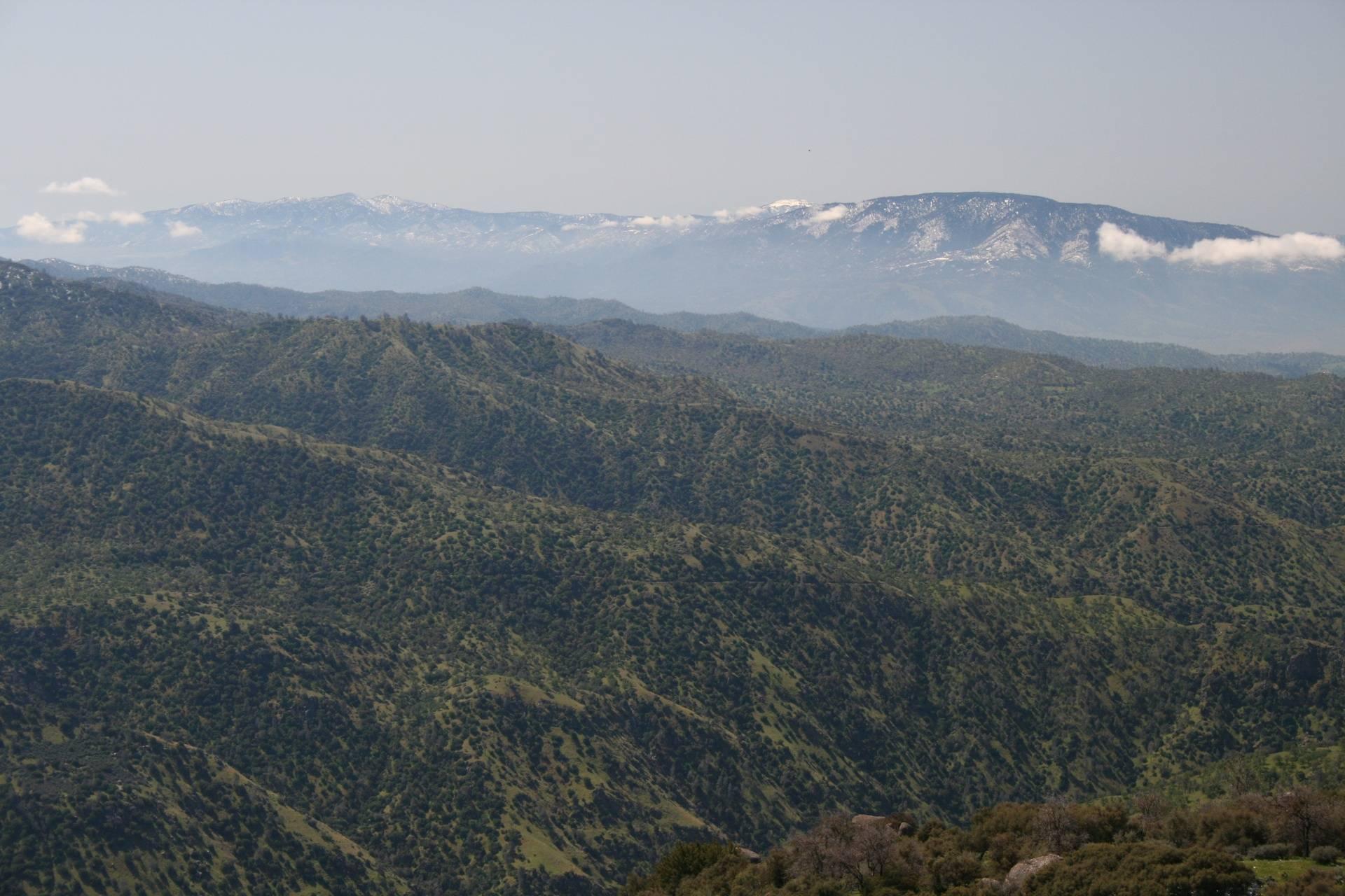 Tehahachapi Mts to left, Bear Mt to right (background)