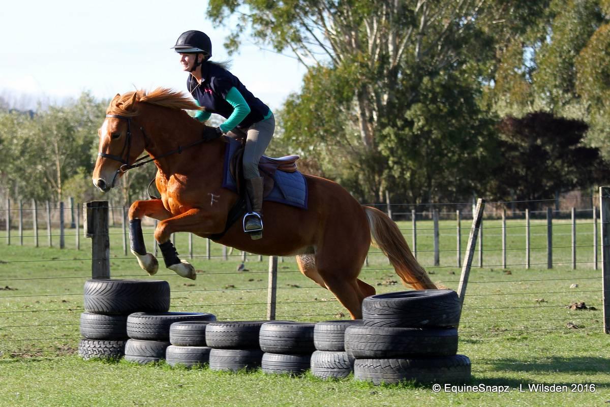 3 weeks under saddle