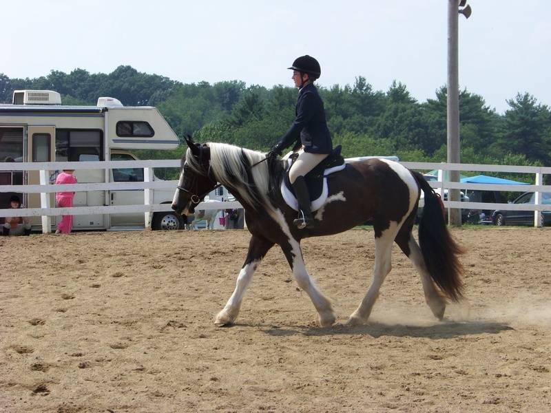 Abby/Sam 4H  2009