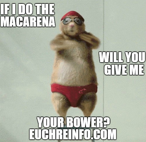If I do the macarena will you give me your bower?