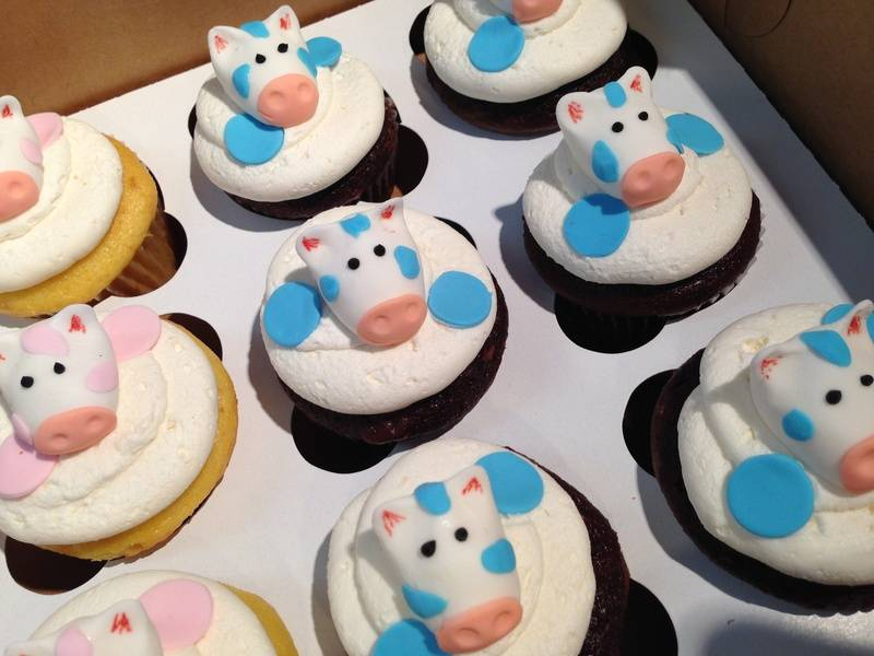 Blue Cow Cupcakes