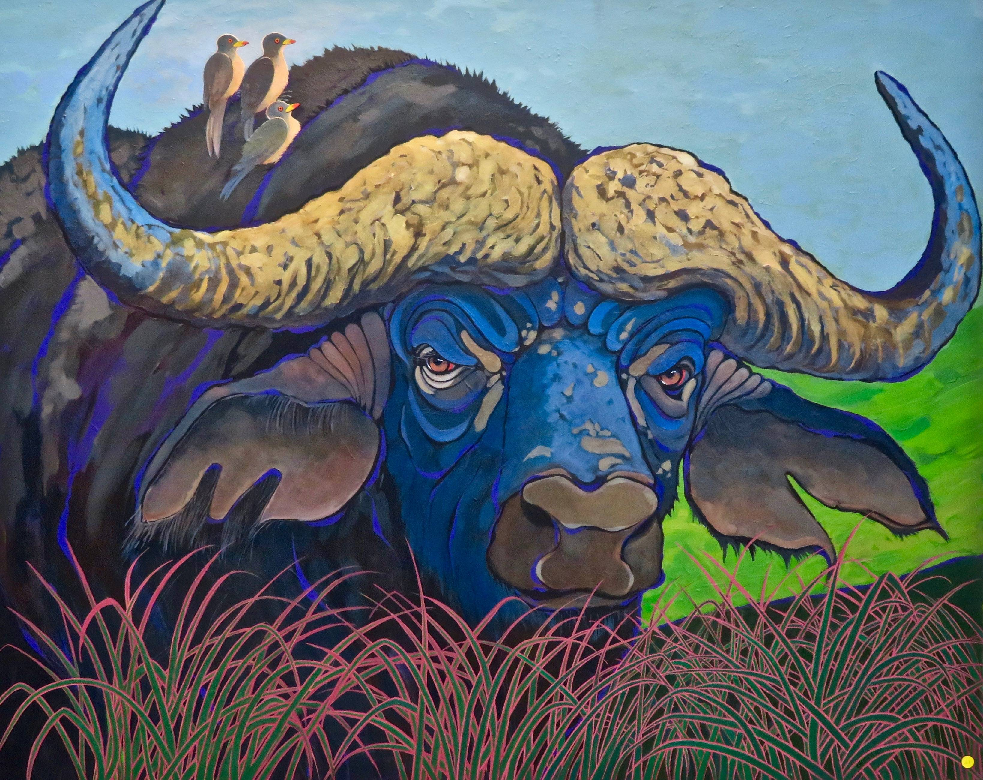 Cape Buffalo Blue