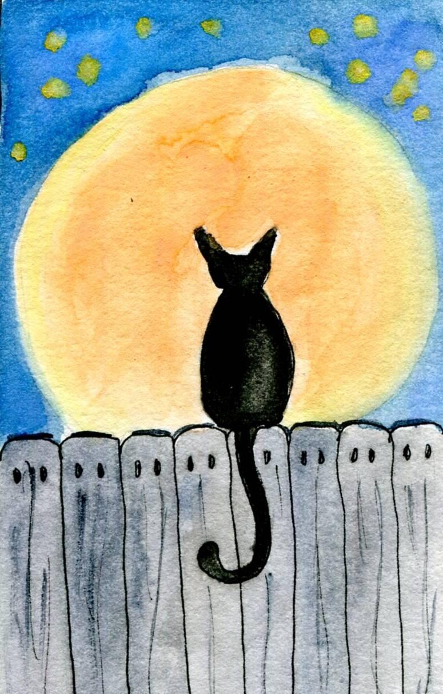 Black Cat Serenade