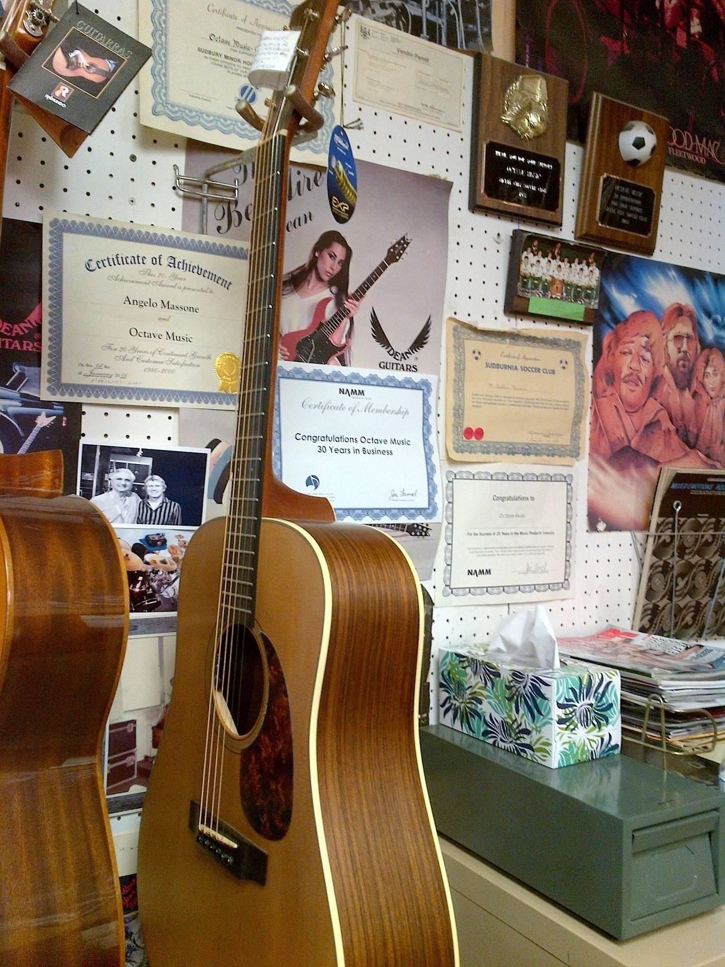 Breedlove Guitar Custom