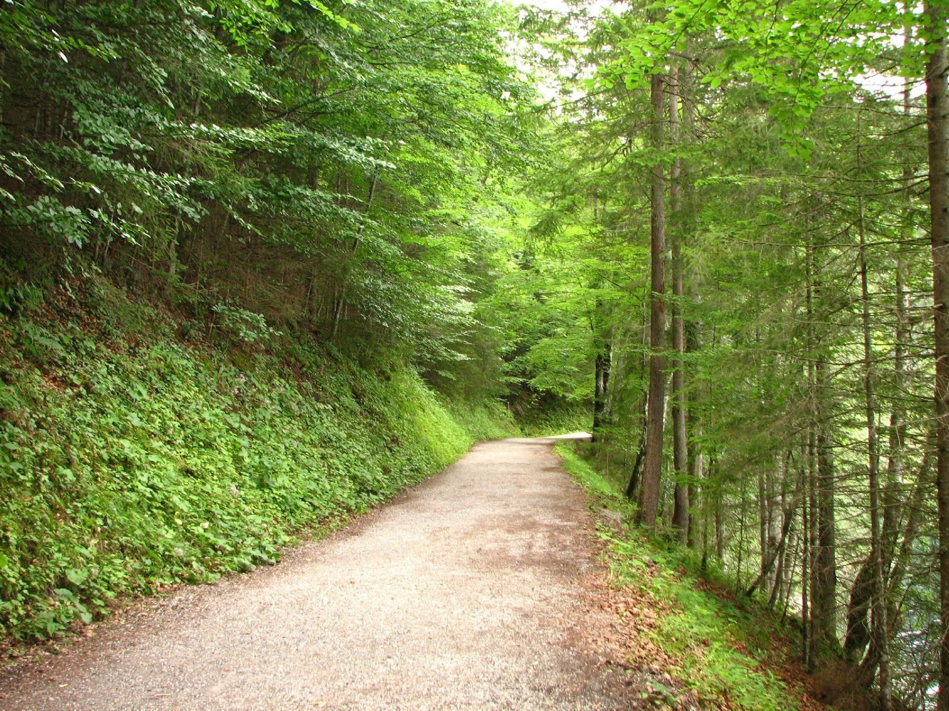 Quiet Path 2