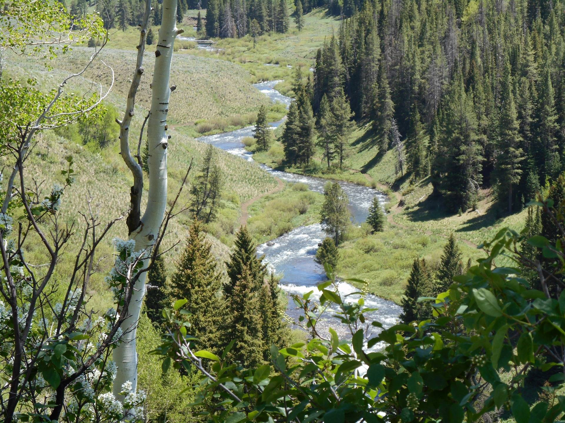 Winding river going to Steamboat