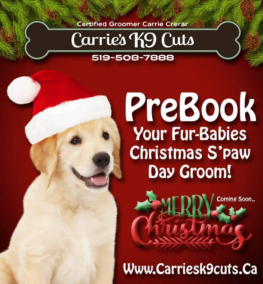 Christmas Pre Booking 2016