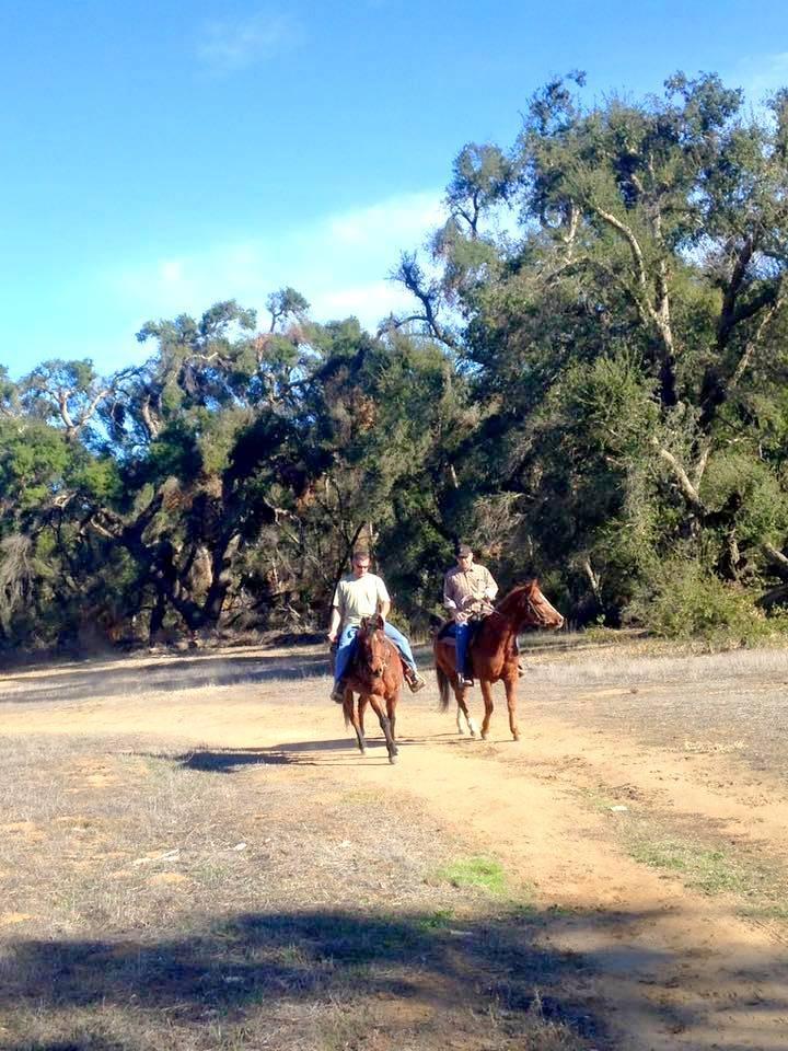Horseback riding La Cresta