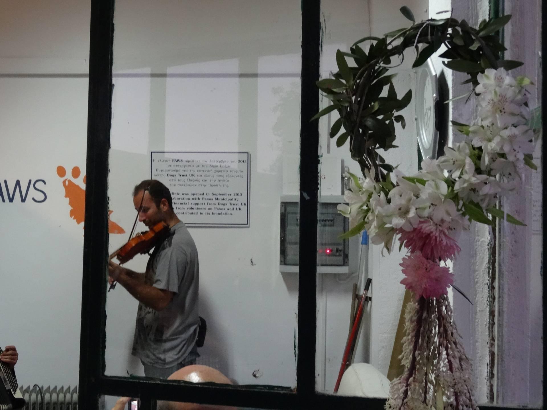 Plaintive Violin