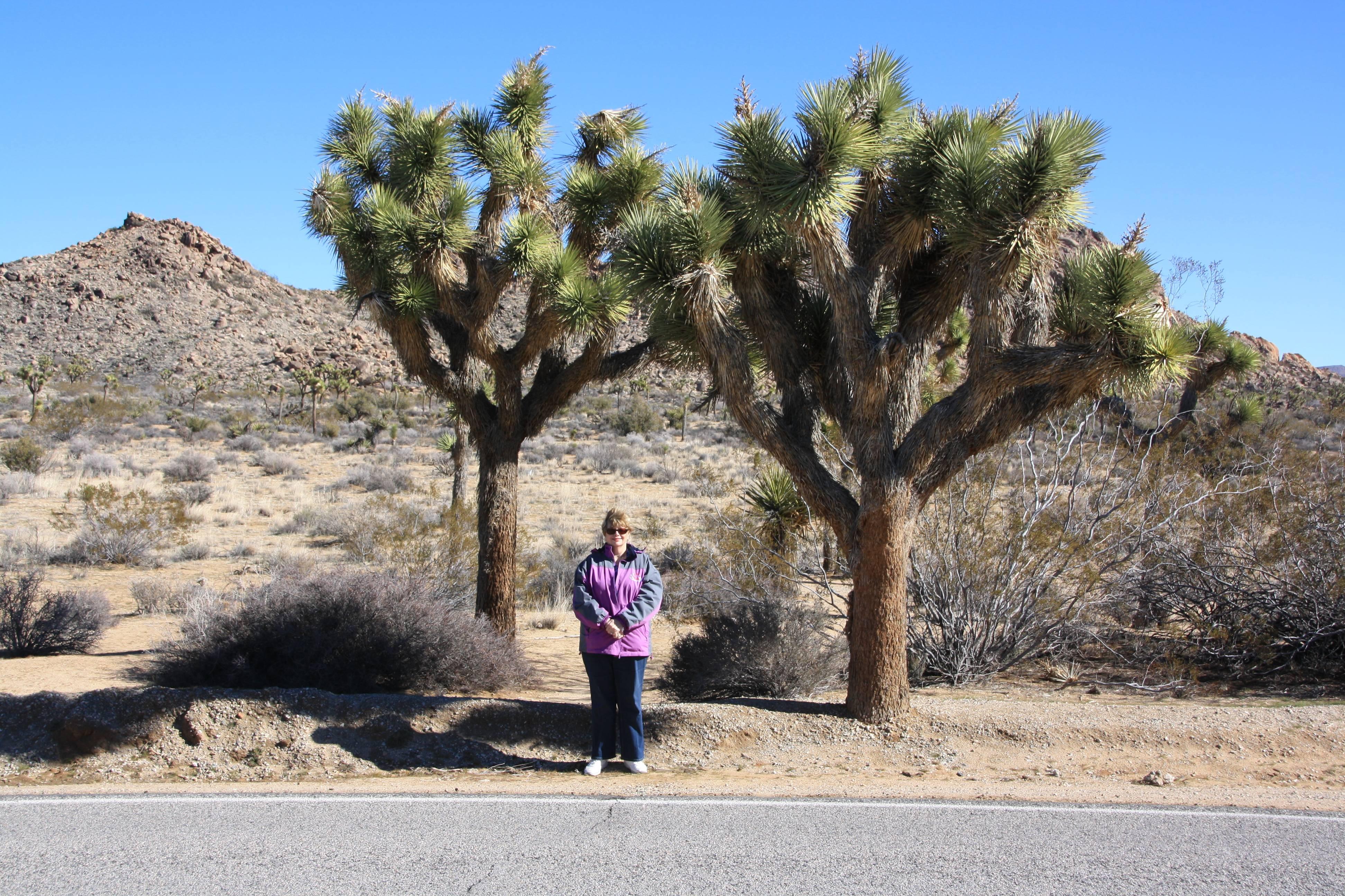 Lynda with Joshua Trees in Joshua Tree National Park CA