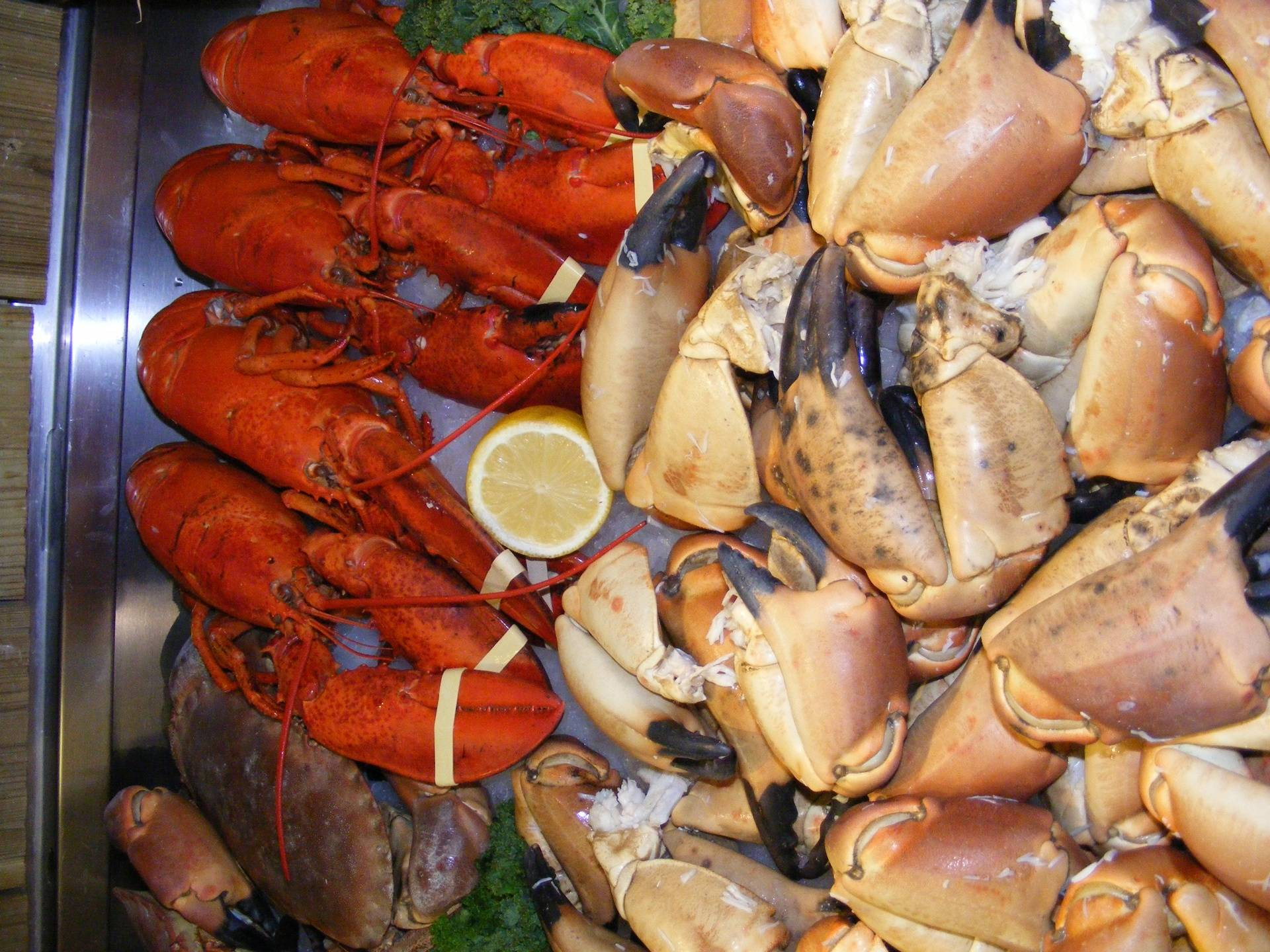 crab claws boiled daily