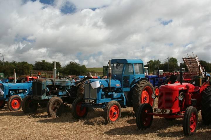 A line of vintage tractors