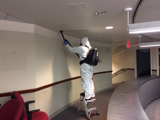 Mold Remediation Building 59