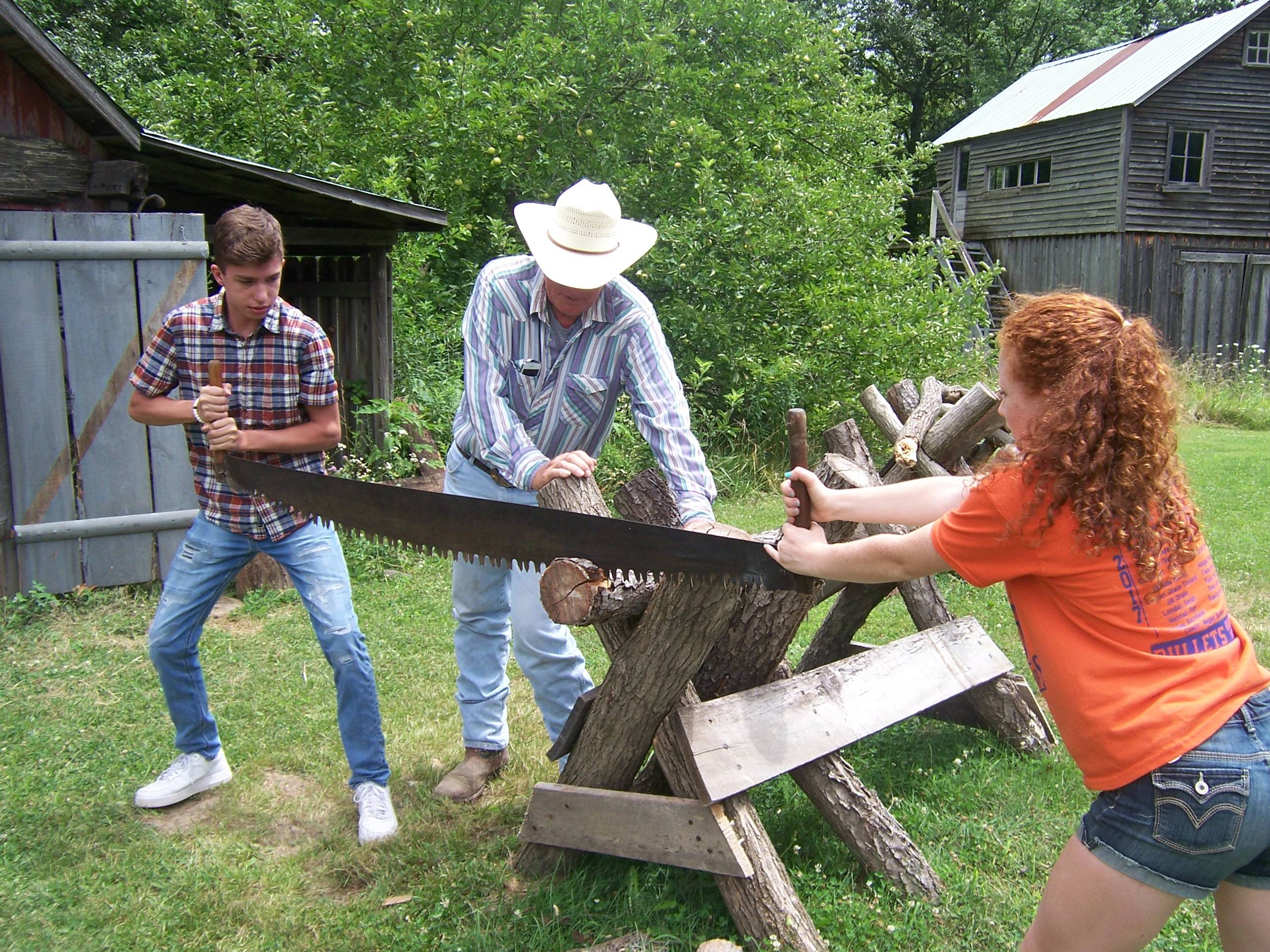 Cross Cut Sawing