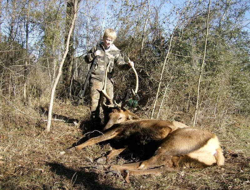 Dakota's Elk