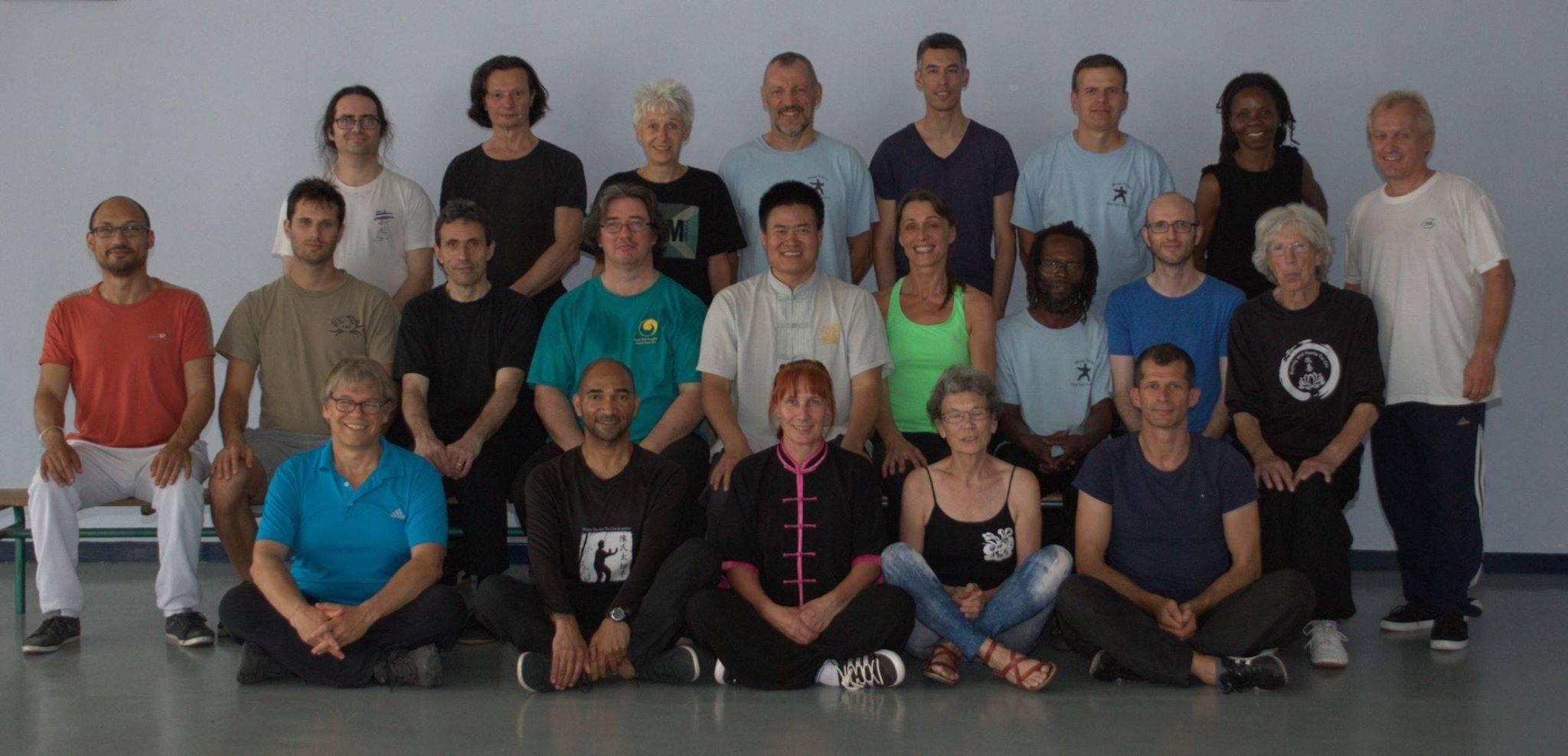July 2015 Paris Laojia Seminar with Master Wang Hai Jun