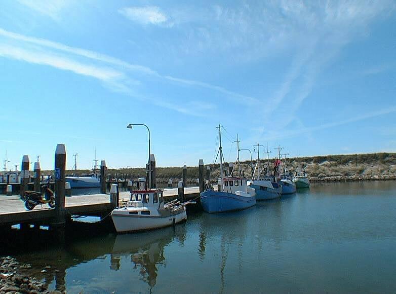 torsminde harbour