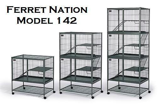 Ferret Nation - Various Models