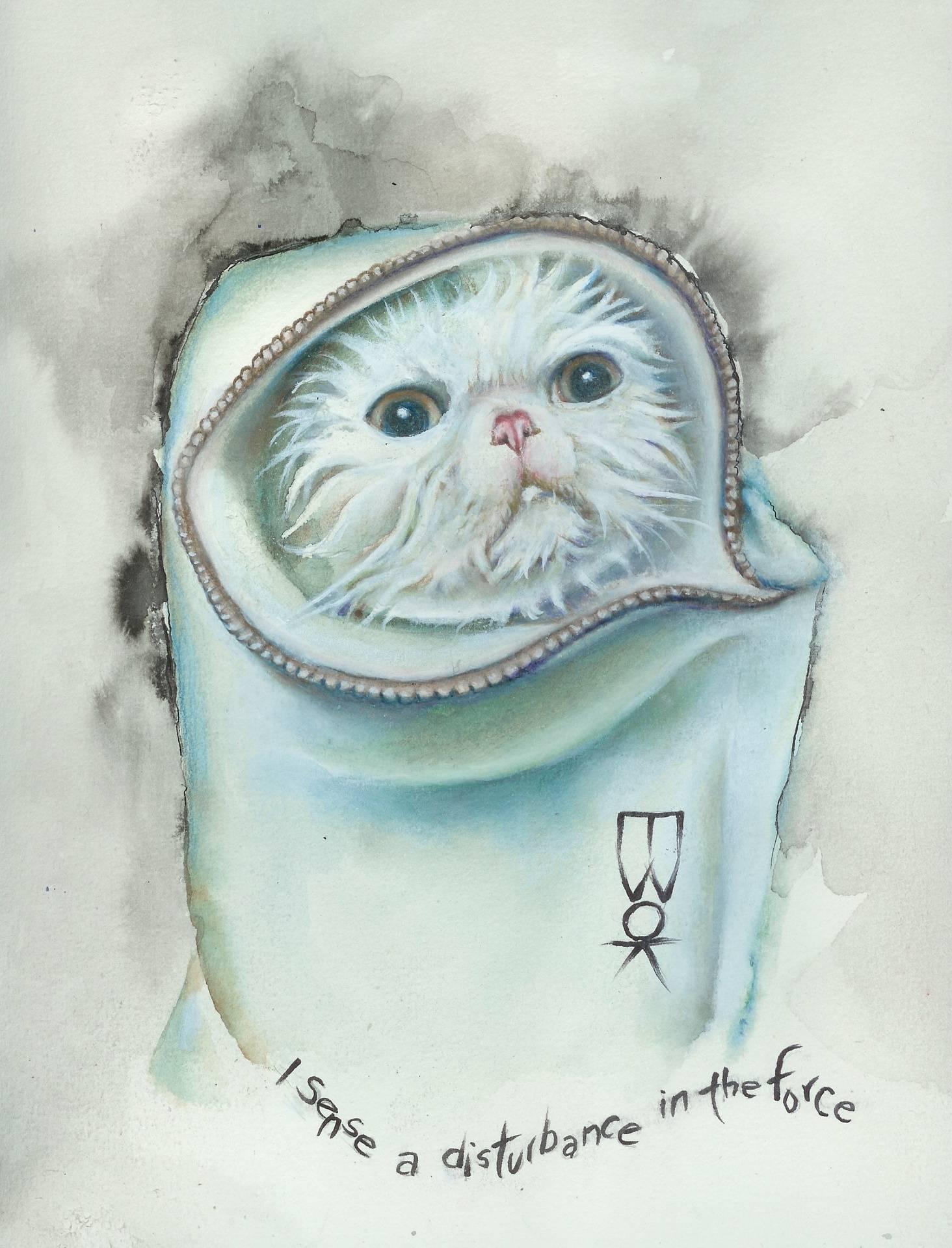 """""""Jedi Cat"""""""